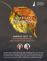 stability-in-transition-85x11